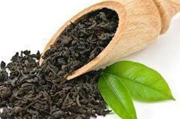 چای ایرانی شناسنامه دار شد