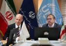 ایران ظرفیت های لازم برای توسعه همکاری های صنعتی با سایر کشورها را دارد