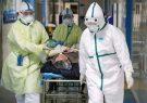 شناسایی ۴۳ مورد جدید ابتلا به بیماری کرونا در استان فارس