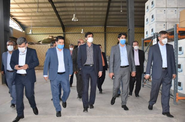بازدیدمعاون وزیر صمت از منطقه ویژهاقتصادی استان فارس